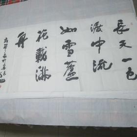 陕西著名书法家张山作品