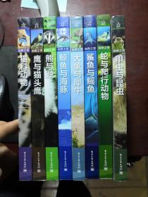 自然之灵 :     鲸鱼与海豚  鹰与猫头鹰  猫科动物  甲虫与昆虫    鲨鱼与鳐鱼   大象与犀牛(全彩)6册合售