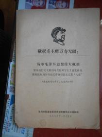 高举毛泽东思想伟大红旗 坚决执行伟大领袖毛主席的无产阶级建党路线 彻底批判、、、、、、