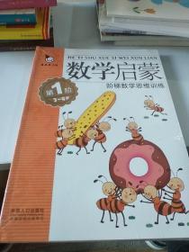 真果果·数学启蒙·阶梯数学思维训练(全4册)