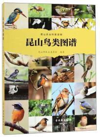 昆山鸟类图谱
