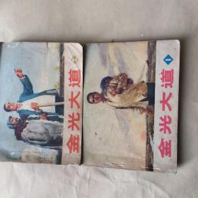金光大道1 2 两册.