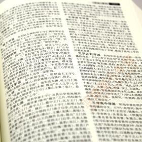 中国哲学大辞典 修订本 张岱年主编上海辞书出版社 哲学工具书 哲学参考资料 辞典书籍 较高学术价值 哲学知识读物 名词术语/正版全新