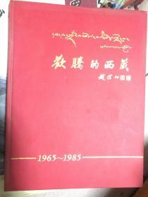 欢腾的西藏--1965-1985藏汉对照 【精装· 仅印3千册】  103