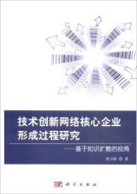 技术创新网络核心企业形成过程研究 : 基于知识扩散的视角