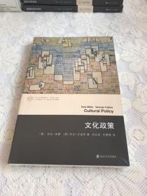 当代学术棱镜译丛//文化政策