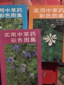 实用中草药彩色图集 第二 三 四册