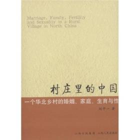 村庄里的中国:一个华北乡村的婚姻、家庭、生育与性