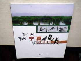 宁夏沙湖湿地鸟类(库存未阅)