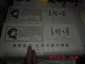 文革小报:春城风暴 (25.26期 合售)  2开8版