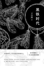 黑铁时代(王小波)