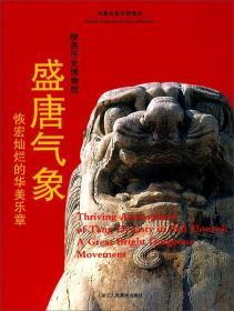 盛唐气象:恢宏灿烂的华美乐章陕西历史博物馆/华夏古昔文明漫步