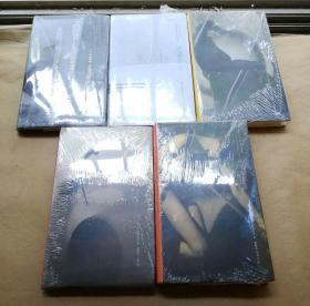 冷记忆 1980-1985 1987-1990 1991-1995 1995-2000 2000-2004(精装本有封套) (全五本合售)