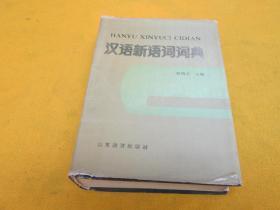 汉语新语词词典——泛黄旧,内页干净,如图