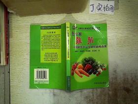 无公害蔬菜中国蔬菜产业发展的战略选择.