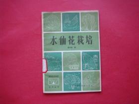 水仙花栽培