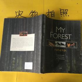 MY FOREST-FULL OF LIFE