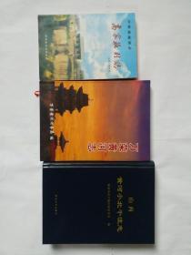 《万荣黄河志》《(万荣皇甫乡)高家庄村志》《山西黄河小北干流志》【合售、参阅描述】.