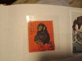 猴票:1980年猴票T.46(第一轮生肖猴)