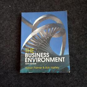 THE BUSINESS ENVIRONMENT SIXTH EDITION