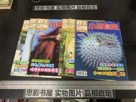 野生动物画报 小哥白尼 (2009年第3.4.6.9.10.11期合售)