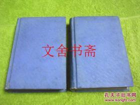 Don Quixote(唐 吉诃德)精装 两册 英文版