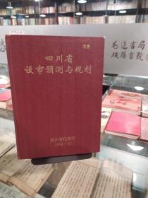四川省设市预测与规划