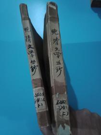晚清文学丛钞 小说四卷(上下册)(馆藏 牛皮纸护封)