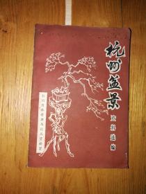 杭州盆景资料选编