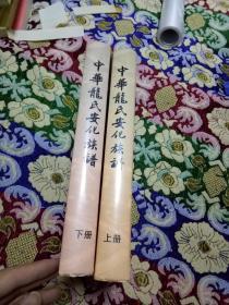 中华龙氏安化族谱(七修) 16开精装全二册