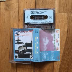 磁带:难忘岁月手风琴与乐队