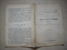 文化大革命大字报编选(第一号)
