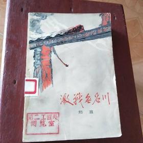 激战无名川﹤郑直著,朝鲜战争﹥