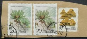 1996-7 苏铁(4-2)信销上品剪片(1996-7-2信销)编年信销散票植物