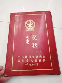 中共武川县人民政府奖状