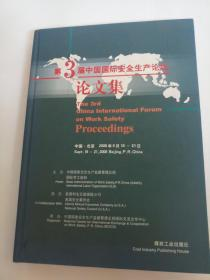 第3届中国国际安全生产论坛论文集The 3rd China international forum on work safety proceedings:[中英文本]