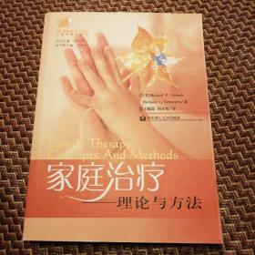 家庭治疗:理论与方法