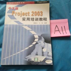 中文版Project 2003实用培训教程——实用培训教程系列