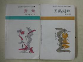 谷雨文学创作丛书小说集《天鹅湖畔》+《折光》2本合售