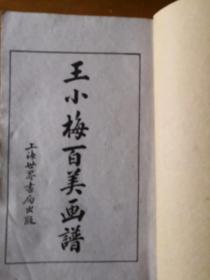 王小梅百美画谱 上册