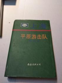 《上海平原游击队》