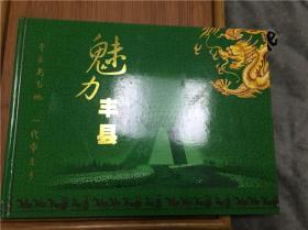 3.16丰县邮票一本