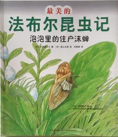 最美的法布尔昆虫记:泡泡里的住户沫蝉