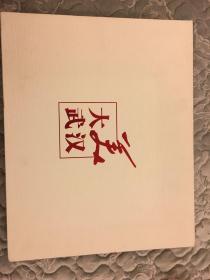 大美武汉:航拍影集