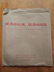辉煌的成就显著的效益-新中国的水利建设 宣传画图片25张一套