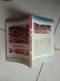 关门打狗第一仗:记辽沈战役、锦州之战