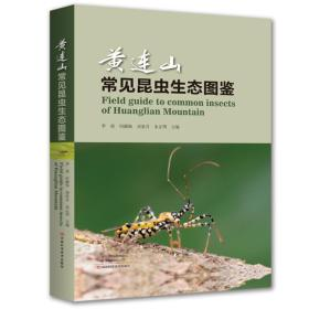 黄连山常见昆虫生态图鉴