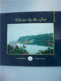 CHESTES BY THE SEA/JIM BARKHOUSE CYNTHIA LAMSON/九品