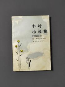 丰村小说集