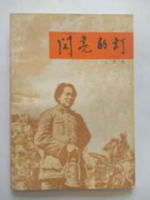 闪亮的灯(李明插图本)-新蕾出版社出版